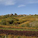 Gîte La Creuse autumn